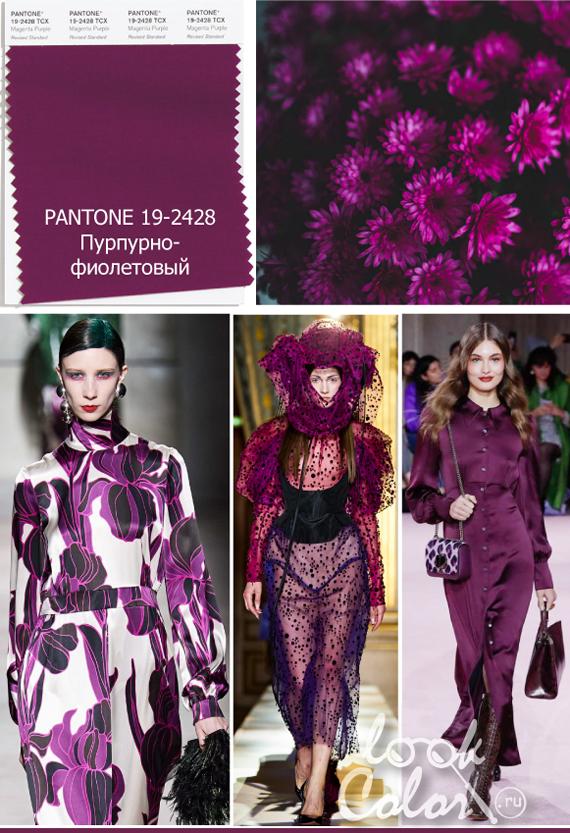 Модный фиолетовый цвет PANTONE 19-2428 Пурпурно-фиолетовый
