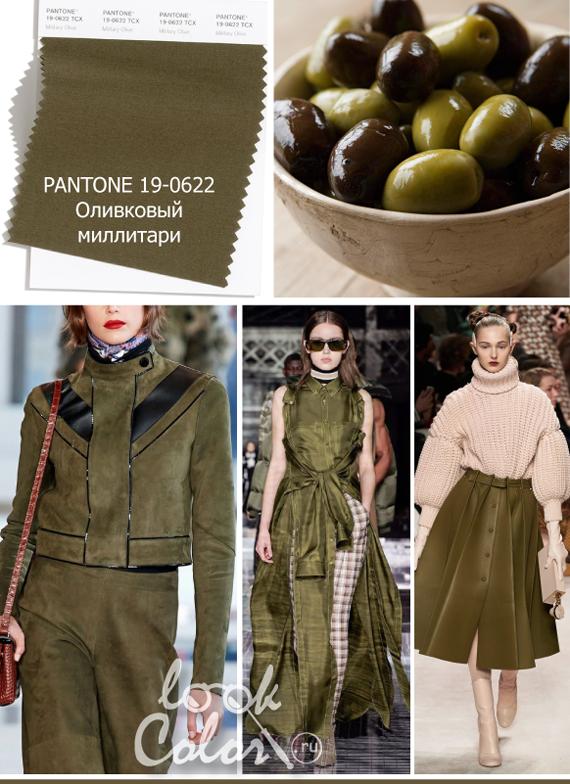 Модный оливковый цвет PANTONE 19-0622 Оливковый миллитари
