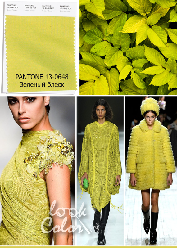 Модный желто-зеленый цвет PANTONE 13-0648 Зеленый блеск