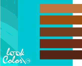 сочетание бирюзового с коричневым