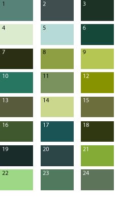 Цвет грязно зелёный