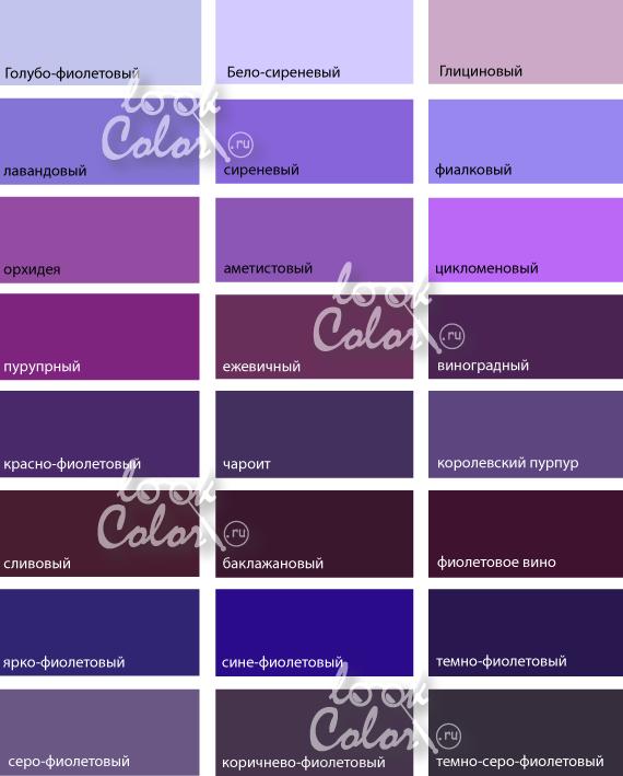 Ежевичный цвет как получить