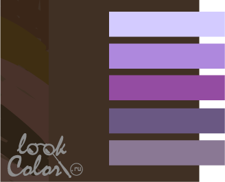 сочетание цветов коричневый и фиолетовый