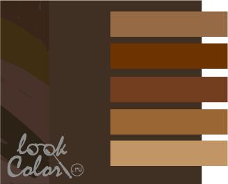 сочетание цветов коричневый и коричневый