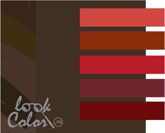 сочетание цветов коричневый и красный