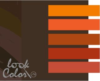 сочетание цветов коричневый и оранжевый