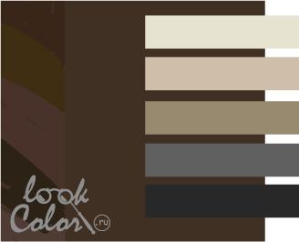 сочетание цветов коричневый и серый