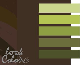 сочетание цветов коричневый и зеленый
