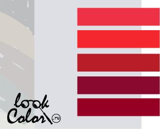 сочетание цветов бело-серый и красный