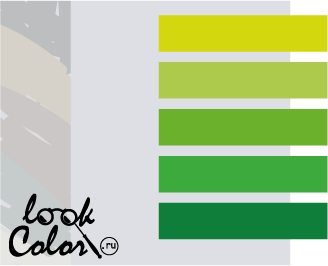 сочетание цветов бело-серый и зеленый