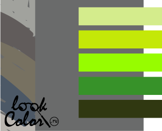 сочетание цветов серый и зеленый