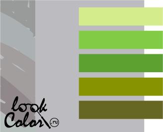 сочетание цветов светло-серый и зеленый