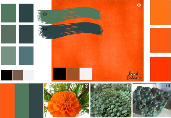 Ярко оранжевый цвет или цвет морковки