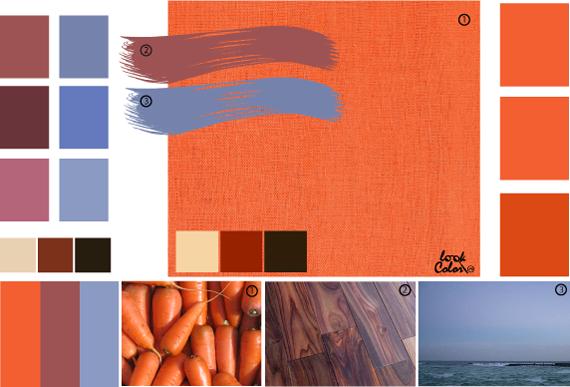 Морковный цвет, сочетания оранжевого цвета