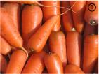 Морковный цвет в природе