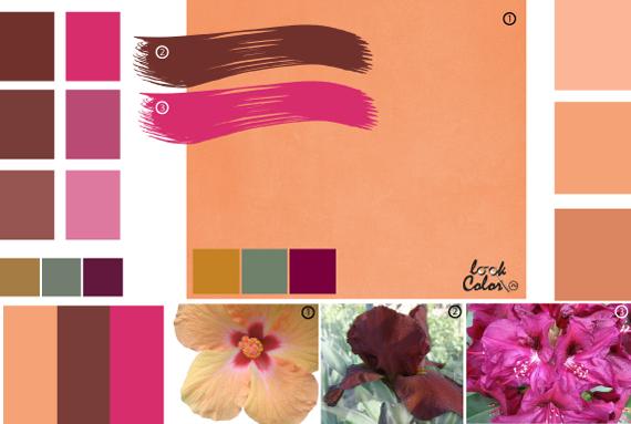 Цвет. чувство цвета