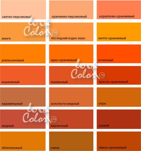 Картинки по запросу оранжевый цвет