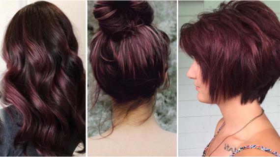 Баклажановые оттенки волос фото