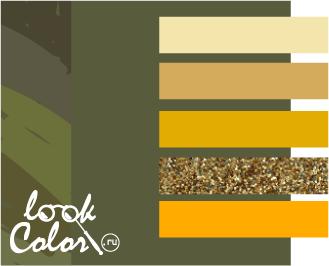 Цвет хаки. Сочетания с цветом хаки