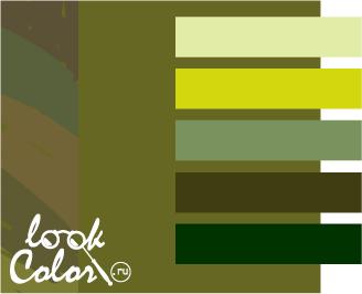 оливковый с теплым зеленым