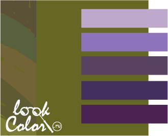 оливковый с фиолетовым