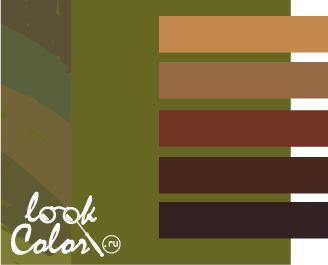 оливковый с коричневым