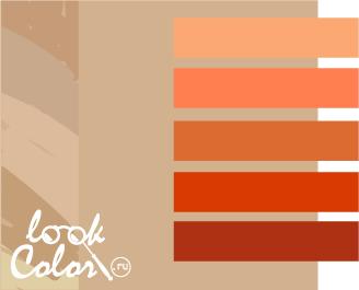 сочетание бежевого с оранжевым