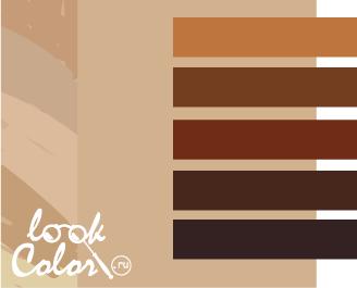 сочетание бежевого с коричневым