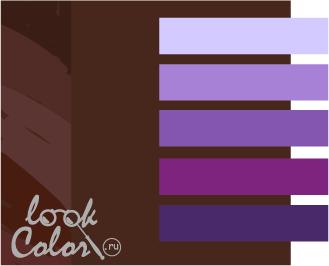 шоколадный с фиолетовым
