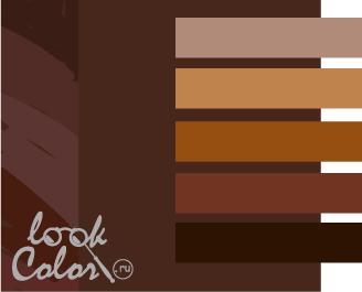 шоколадный с коричневым