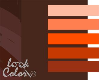 шоколадный с оранжевым
