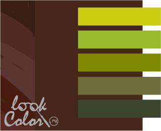 шоколадный с теплым зеленым