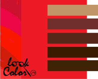 сочетание цветов красный и коричневый