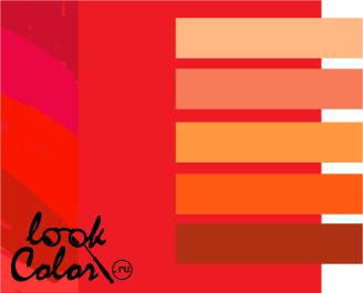 сочетание цветов красный и оранжевый