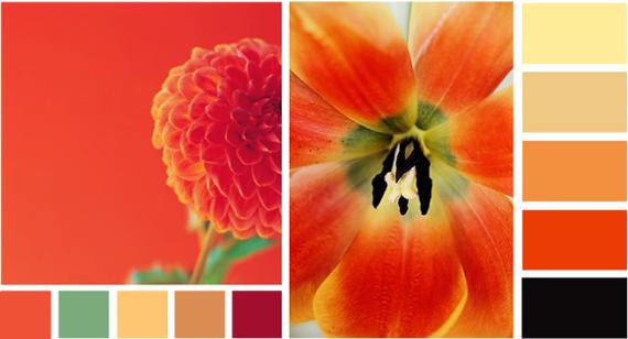 Как называется красно-оранжевый цвет