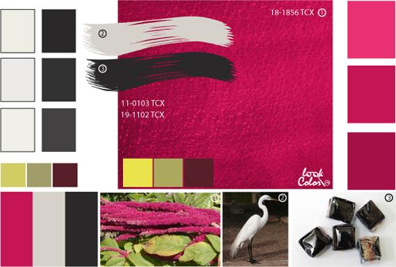 Амарантовый цвет, сочетание цветов розовый
