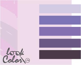 сочетание цветов бело-лиловый и фиолетовый