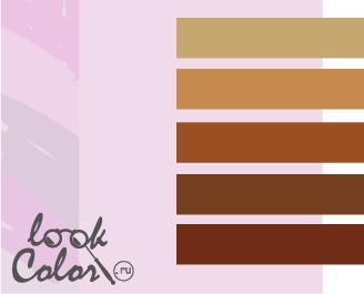 сочетание цветов бело-лиловый и коричневый