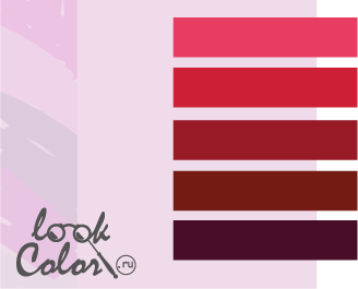 сочетание цветов бело-лиловый и красный