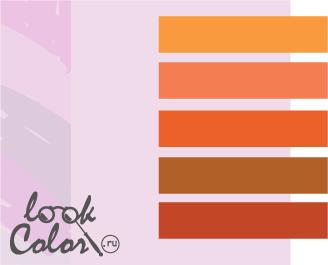 сочетание цветов бело-лиловый и оранжевый