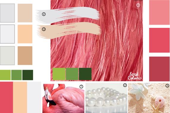 Цвет фламинго, сочетание цветов розовый