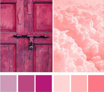 Холодный и теплый розовый цвет