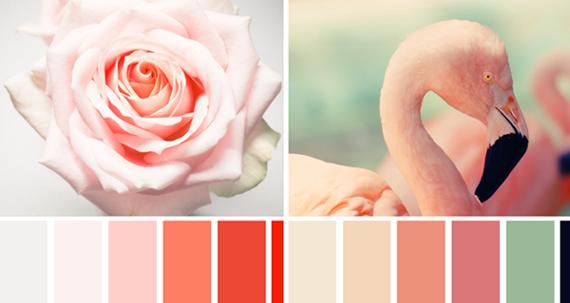 Розовый цвет теплый или холодный