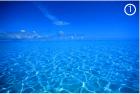 Ярко-синий цвет фото