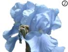Небесно-голубой цвет