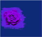Сине и фиолетовый цвет сочетание
