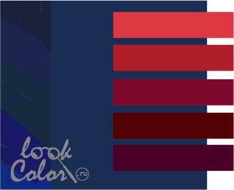 sochetanie temno sinego 6 - Темно синий темно красный