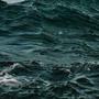 Темный сине-зеленый цвет