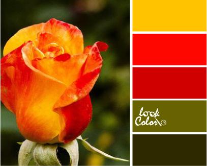 Красный, зеленый, оранжевый