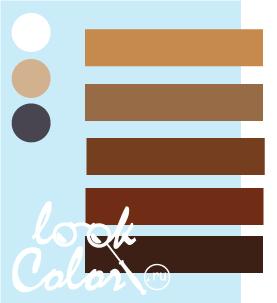 Сочетание бело голубого и коричневого
